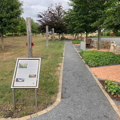 Weg zur Kindergrabstätte bis 18 J Friedgarten